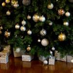 クリスマスツリーの木!種類は何?もみの木を飾る?