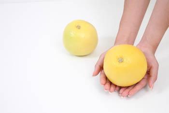 グレープフルーツをどうぞ