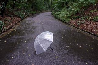 路上におちた傘