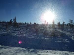 フィンランド雪原